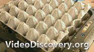 Радиаторы, Контейнеры для яиц, Цыпленок, Видеоигры